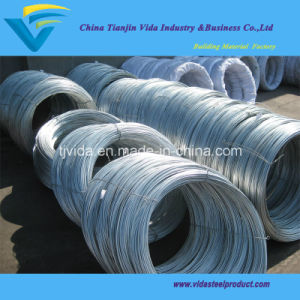 Galvanized Fence Wire/Steel Wire pictures & photos