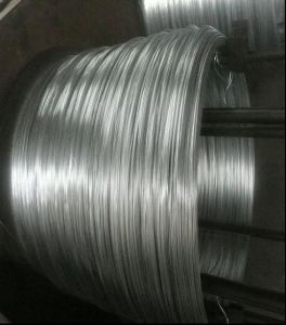 Galvanized Steel Wire - 3