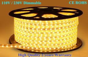 LED Light SMD 230V 110V LED Strip Light pictures & photos