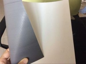 Hot Sale Roof Garden PVC Waterproofing Membrane/Roofing Material (ISO) pictures & photos