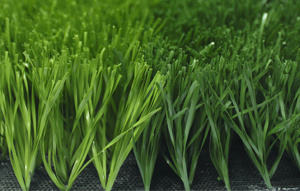 Artificial Grass for Soccer (50S113N15G1)