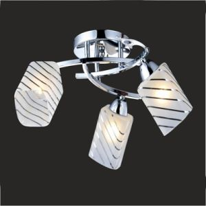 Chandelier Lamp Ceiling Lights pictures & photos