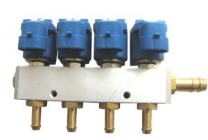 Natral Gas Conversion Kits