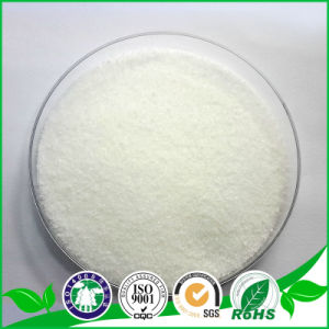 GMP Standard Citicoline Sodium CAS: 33818-15-4 pictures & photos