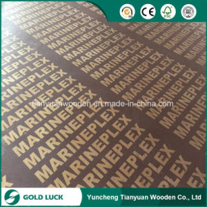 Shuttering Plywood for Construction Building Material pictures & photos