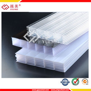 Ten Years Guarantee Multiwall PC Polycarbonate Sheet pictures & photos