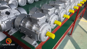 Ie2 High Efficiency Electrical Motor (0.75kW, 910rpm, 480V/60Hz) pictures & photos