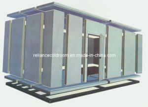 Cold Storage Room for Vegetable and Fruit (PU100426) pictures & photos