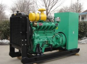 250kw Natural Gas Generator Set (WTQ250GF) pictures & photos