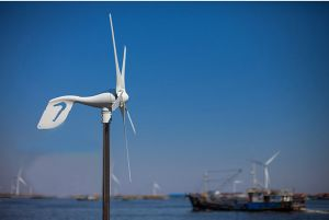 600W Wind Generator (small wind generator 100W-20KW) pictures & photos