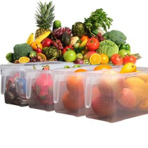 Independent Kitchen Refrigerator Food Fresh-Keeping Box with Lid Handle (Transparency) pictures & photos