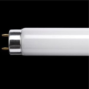 T8 Fluorescent Lamp Tube pictures & photos