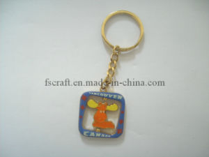 Keychain (FS2013-3120) pictures & photos