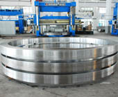 Bearing Ring Forgings pictures & photos