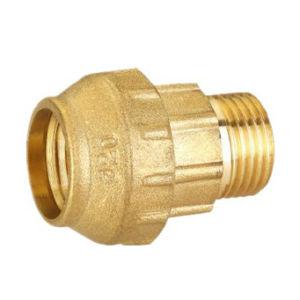 Brass Fittings (SSF-20590)