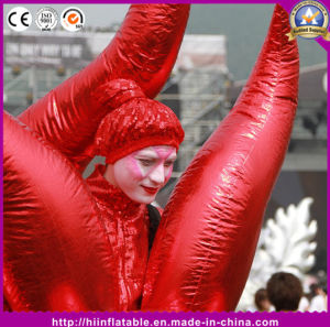 Hot Item Decor Inflatable Red Golden Fire Parade Performance Costume for Event Stage Performance pictures & photos