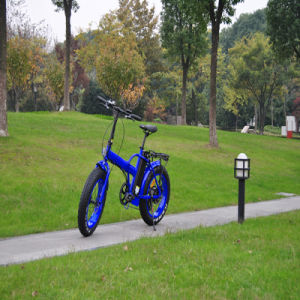 Electric Folding Bike with 20inch Kenda Tire pictures & photos