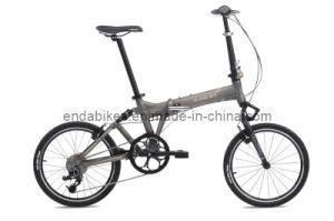 Folding Bicycle/Bike (FA083)