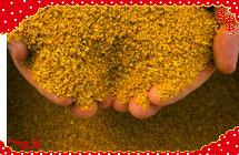 Corn Gluten Meal 60% From China-Nutricorn pictures & photos