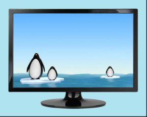 22 Inch LCD Monitor (KT228)