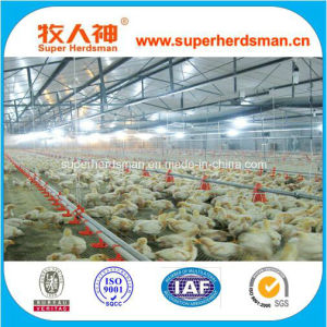 Hot Sale Automatic Poultry Farm Equipment for Broiler Chicken House pictures & photos
