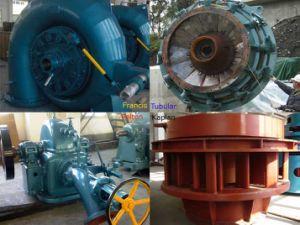 Francis Kaplan Pelton Tubular Turgo Bulb Turbine Generator