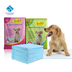60*60cm Waterproof High Absorption Puppy Training Pads for Wee Wee Pet Training pictures & photos