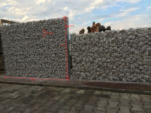 Metal Wire Mesh pictures & photos