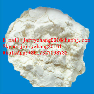 Supply High Qualiy Nutraceuticals CAS 9007-28-7 Animal Extracts Chondroitin Sulfate
