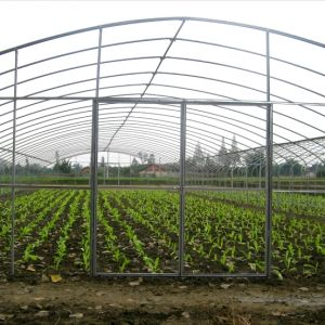 Hot Sale Cheap Poly Agriculture Tunnel Green House pictures & photos