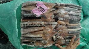 Sea Frozen Illex Squid Tube pictures & photos
