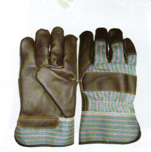 Winter Gloves pictures & photos