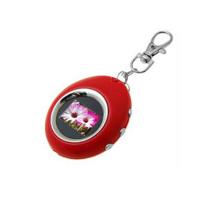 OEM Design Delicate Photo Keychain pictures & photos