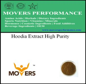 Good Price with High Purity: Hoodia Extract pictures & photos