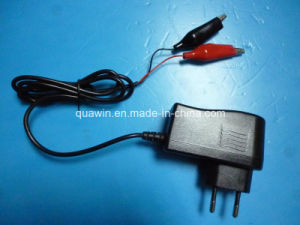 12V 0.8A Lead-Acid Battery Charger pictures & photos