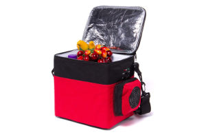 Portable Mini Electronic Cooler 6liter DC12V with Cooling and Warming for Car Application pictures & photos