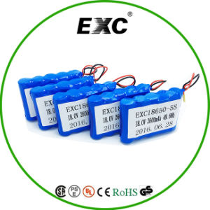 Customized 18650 5s 18V 48.6wh Rechargeable Battery Pack with Connector pictures & photos