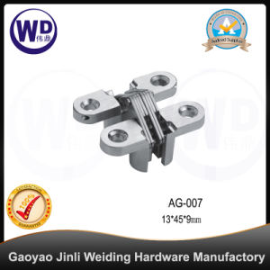 Zinc Alloy Concealed Gate Door Hinge, Cross Hinge AG-007 pictures & photos