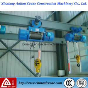 All Series Large Stock Electric Lifting Hoist