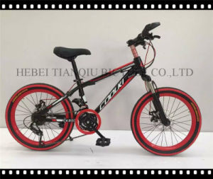 24-27 Inch Mountain Bike/MTB/OEM Mountain Bike pictures & photos