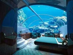 Modern Acrylic Aquariums pictures & photos