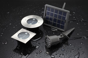 0.6W Ni-MH IP65 LED Solar Light with CE pictures & photos