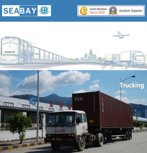 Sea Freight Services China Panama pictures & photos