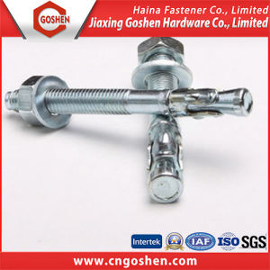Color Zinc Plated Drop in Anchor (m6~m20) pictures & photos