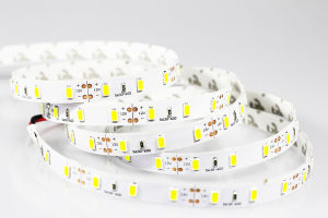 LED Strip Light IP65 100m/Roll 220V 110V Outdoor Use Waterproof High Quality for Garden Party Street pictures & photos