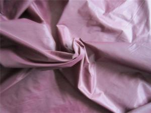 20d Nylon Taffeta Fabric for Down Coat (XSN006) pictures & photos