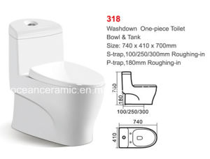 Washdown One-Piece Toilet (No. 318) Hot Sale in India, Pakistan pictures & photos