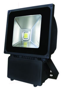 Outdoor COB Ground Mounted 100W Flood LED Light pictures & photos