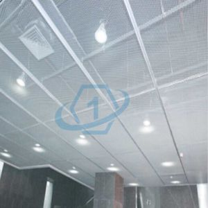 30 Warranty Years Expanded Aluminum Panel for Curtain Wall Construction pictures & photos