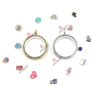 30mm Multicolor Living Magnets Crystal Glass Floating Lockets for Necklace Gifts (FL150D) pictures & photos